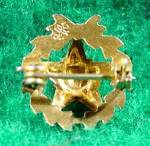 Click to view larger image of 10K Yellow Gold Enameled Order of Eastern Star Pin (Image2)