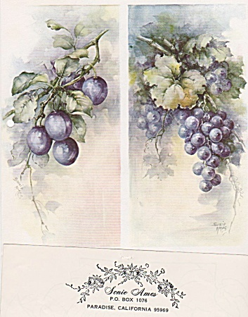 Vintage - Sonie Ames - Two Designs - Plums & Grapes