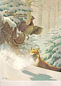 Virginia Wildlife - December 1981 (Image1)