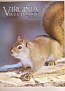 Virginia Wildlife - January 1985 (Image1)