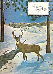 Virginia Wildlife - December 1967 (Image1)