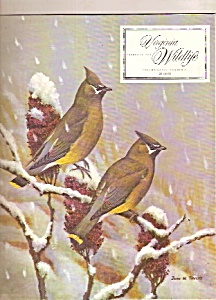 Virginia Wildlife - February 1973