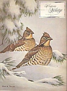 Virginia Wildlife -  December 1971 (Image1)