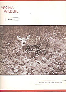 Virginia Wildlife -  April 1959 (Image1)