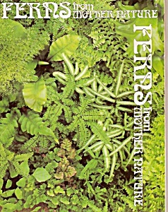 FERNS  from Mother Nature - copyright 1977 (Image1)