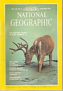 National Geographic magazine -  November 1981 (Image1)