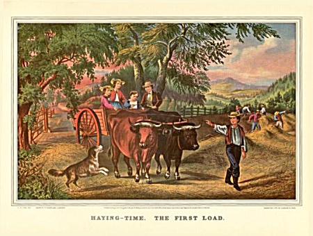 Haying Time-the First Load