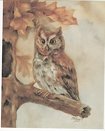 Vintage - Skippy Clark - Screech Owl On Limb - 1986