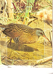 Virginia Wildlife -  June 1998 (Image1)
