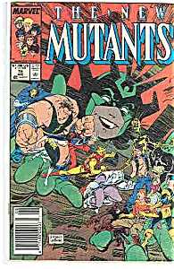 The New Mutants - Marvel comics - # 78 Aug.  1989 (Image1)