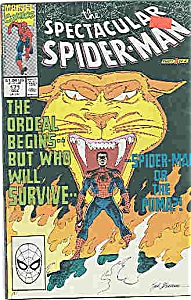 Spiderman - Marvel comics # 171 Dec. 1990 (Image1)