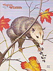 Virginia Wildlife - October 1977