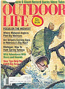 Outdoor Life  Magazine - April 1981 (Image1)