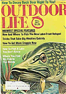 outdoor Life Magazine - June 1981 (Image1)