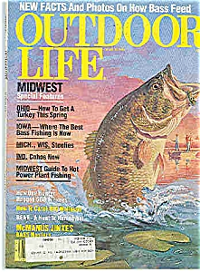 Outdoor Life  - March 1982 (Image1)