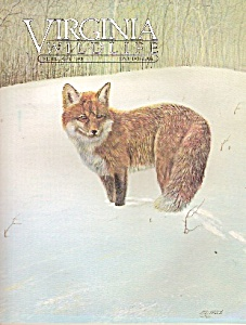 Virginia Wildlife -[ February 1984