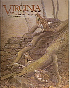 Virginia Wildlife-  November 1984 (Image1)