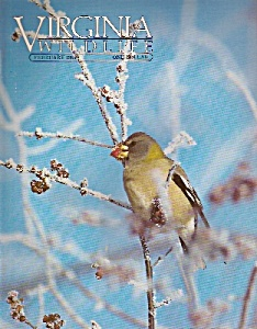 Virginia wildlife - February 1985 (Image1)