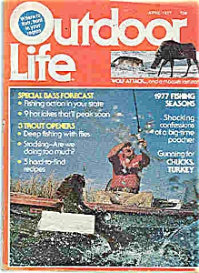 Outdoor Life Magazine - April 1977 (Image1)