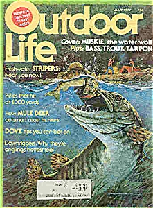 Outdoor Life Magazine - July 1977