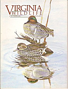 Virginia wildlife -  October 1985 (Image1)