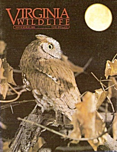 Virginia Wildlife -November 1985 (Image1)