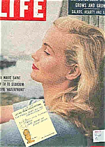 Life Magazine - July 19, 1954 (Image1)