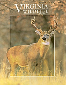 Virginia  Wildlife - September 1998 (Image1)
