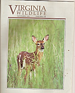 Virginia Wildlife - November 1995 (Image1)