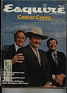 Esquire- June 1973 (Image1)