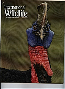 International Wildlife - Nov-Dec. 1994 (Image1)
