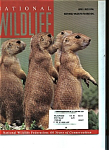 National Wildlife   June/July 1996 (Image1)