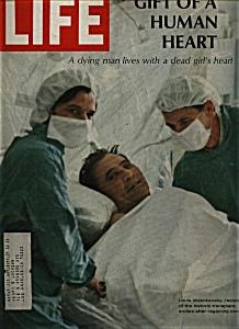 Life Magazine - December 15,  1967 (Image1)