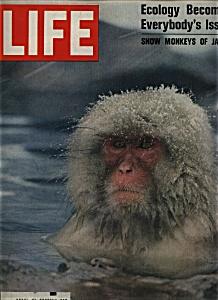 Life Magazine -  January 30, 1970 (Image1)