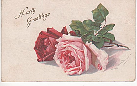 VINTAGE~CATHERINE KLEIN~ROSES~POSTCARD~1915 (Image1)