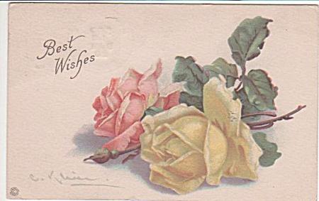 VINTAGE~ROSES~CATHERINE KLEIN~1920 (Image1)