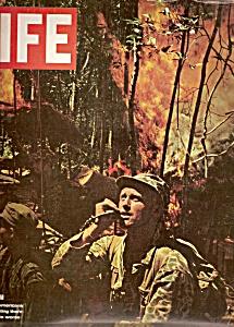 Life magazine -  November 27, 1964 (Image1)