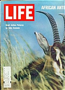 Life Magazine - December 5, 1969 (Image1)