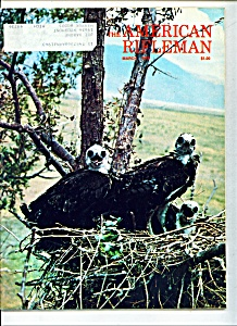 The American Rifleman -  March 1976 (Image1)