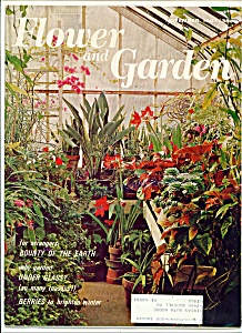 Flower and Garden magazine- November 1967 (Image1)