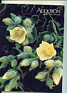Audubon magazine- July 1973 (Image1)