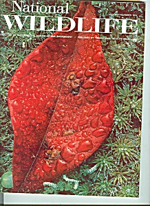 National Wildlife - October, November 1974