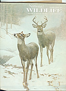 National wildlife -  December, January 1978 (Image1)
