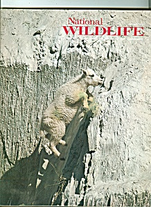 National Wildlife   April  may 1978 (Image1)