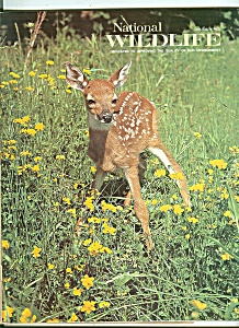 National Wildlife June-july 1975