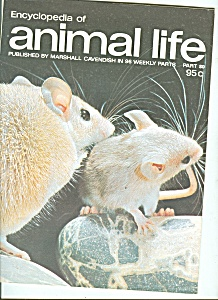 Enclopedia of animal life - part 80   1974 (Image1)