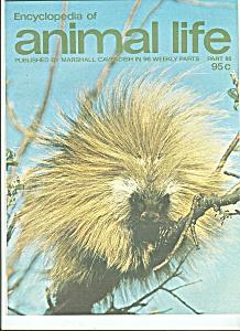 Encyclopedia of animal lie - part 88  1974 (Image1)