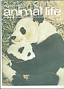 Encyclopedia of animal life - Part 61 -  1974? (Image1)