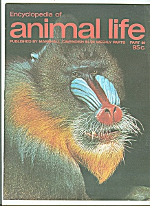 Encyclopedia of animal life - Part 50  1974? (Image1)