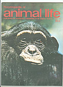 Encyclopedia of animal life -  Part 16 -  1973 (Image1)